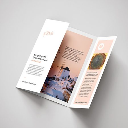 Single Gate Fold Brochure