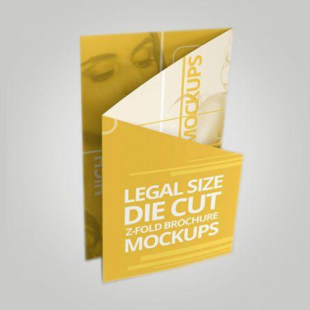 Die Cut Z Fold Brochure