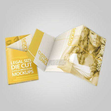 Z Panel Fold Brochure